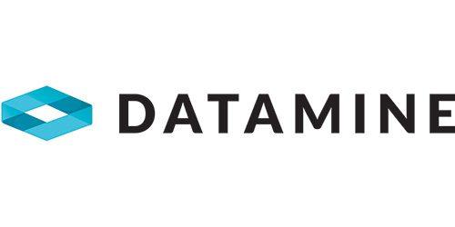 Datamine Software